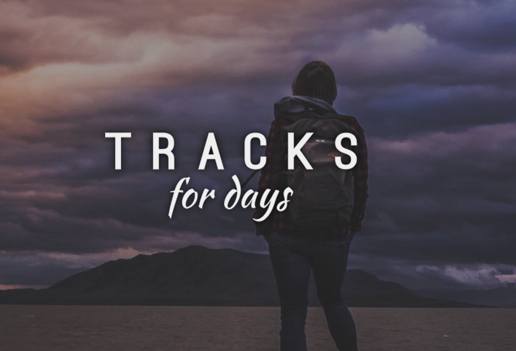 Tracks For Days - Traveler